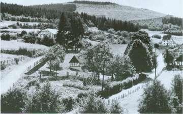 03-Halle1953